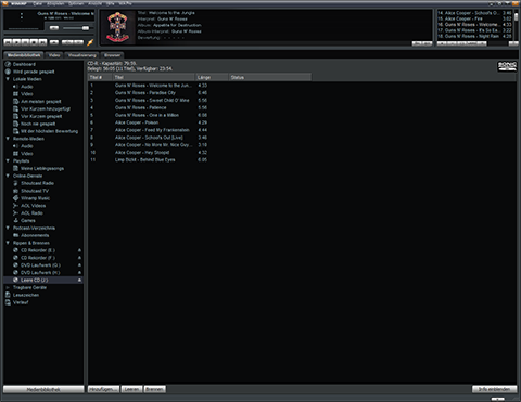 Winamp Programmfenster